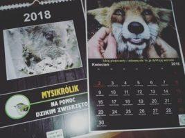 Bielsko-Biała: Pomoc dzikim zwierzętom