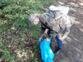 Zawiercie: Akcja sprzątania lasu
