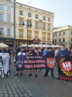 Brygada Górnośląska: Kraków przeciw paradzie równości.